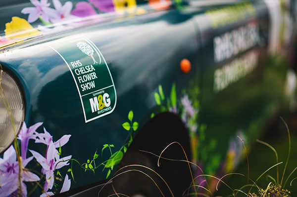 M&GInvestments_TaxiWrap_ChelseaFlowerShow_Closeup