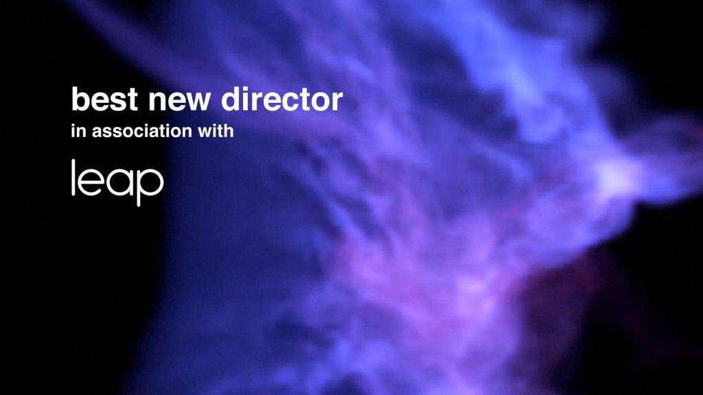 UKMVA 2020 LEAP sponsor best new director