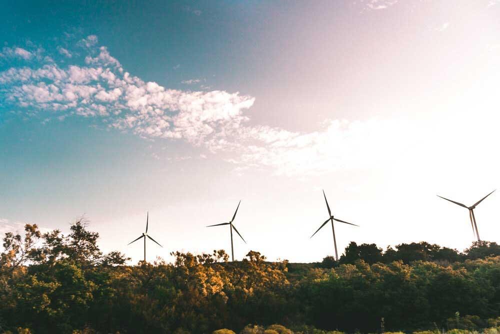 Renewable energy- wind farm