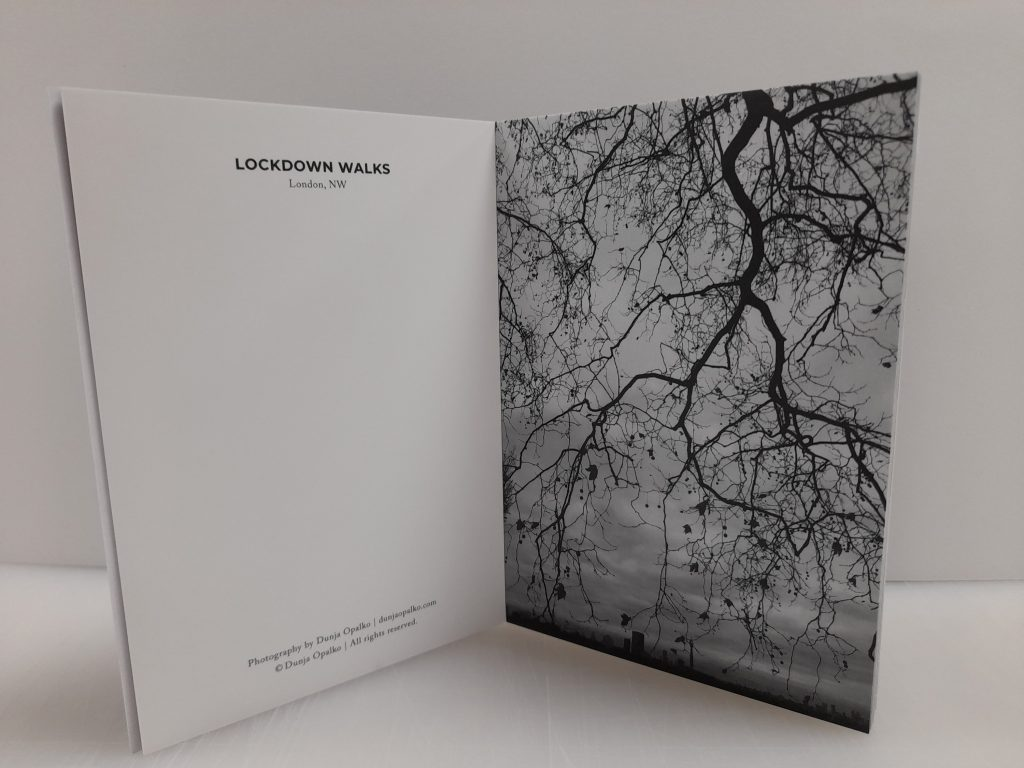 notecard book tree-top image printed for photographer dunja opalko